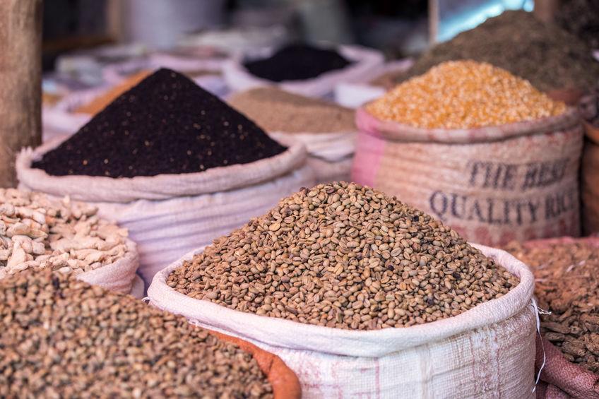Compresas de semillas