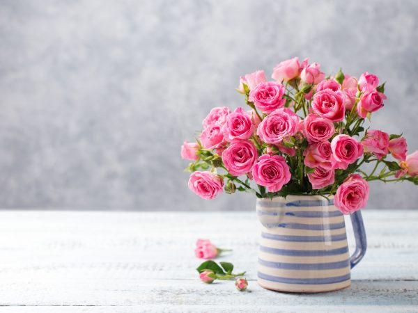 Rose flowers in vase. Beautiful romantic bouquet. Copy space.
