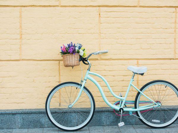 Canasto para bicicleta