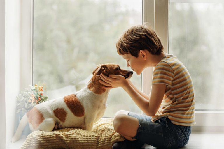 Niño con su mascota