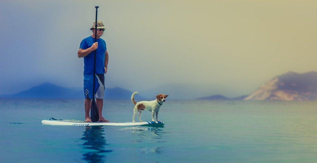 hombre con su perro surfeando